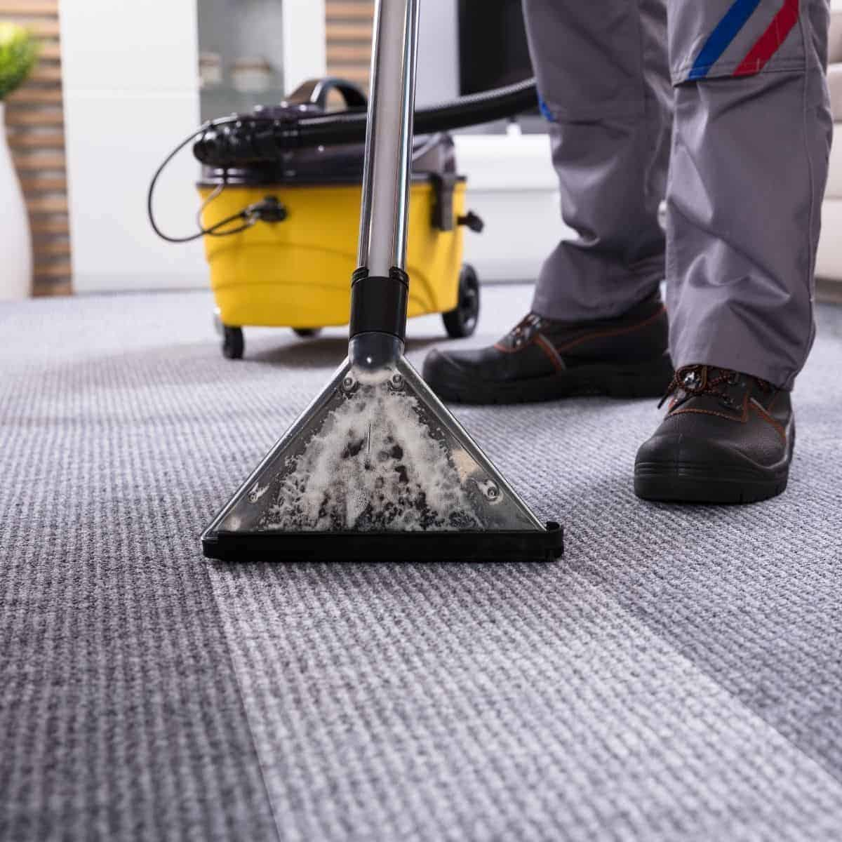 Person using a carpet cleaner.