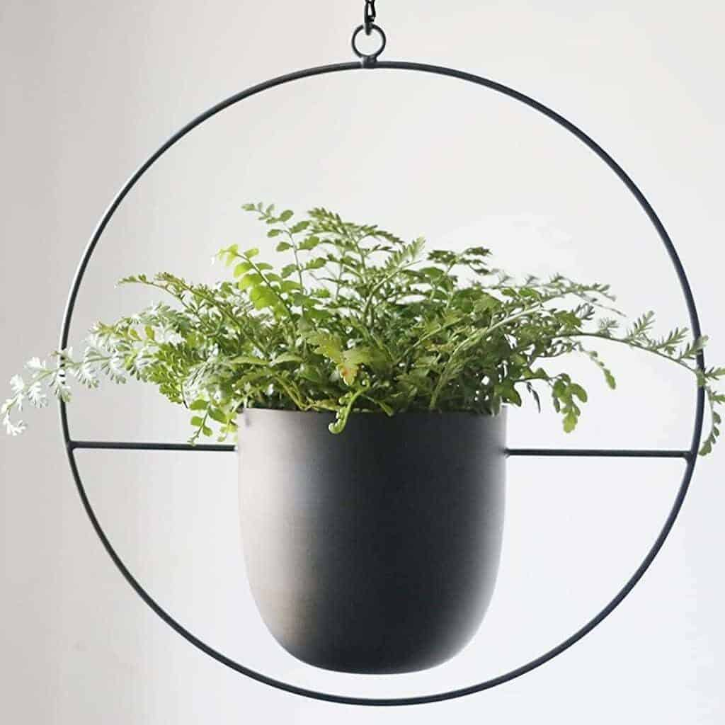 Black hanging planter with a circle around it.