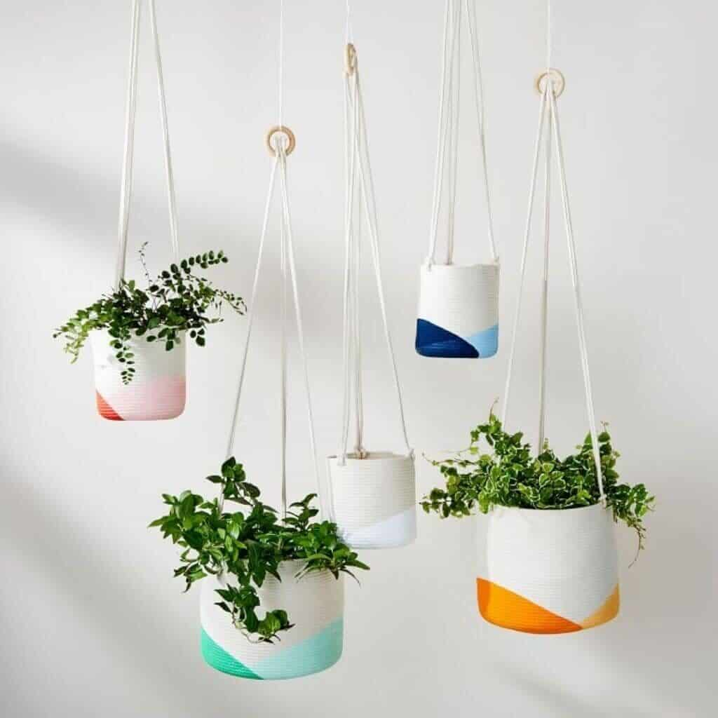 Five hanging planters of different colors and sizes.